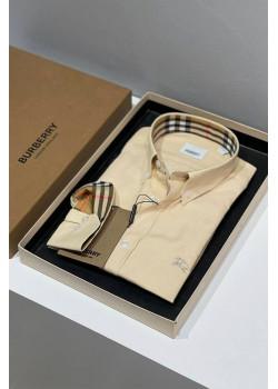 Классическая мужская рубашка бежевого цвета